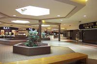 Southtown Mall Labelscar Schendel credit 2001