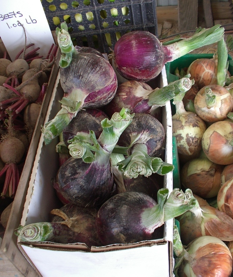 Onions_red_farmers_market_july